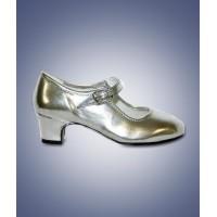 Prinsessen Schoenen Kind Zilver