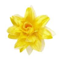 Hawaii bloem haarclip glitter geel