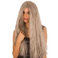 Feestpruik grijs lang haar