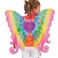 Vlinder vleugels regenboog 60x54cm