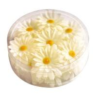 Decoratie bloemetjes Madeliefjes Wit 20st