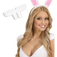konijn konijnentanden gebit bunny