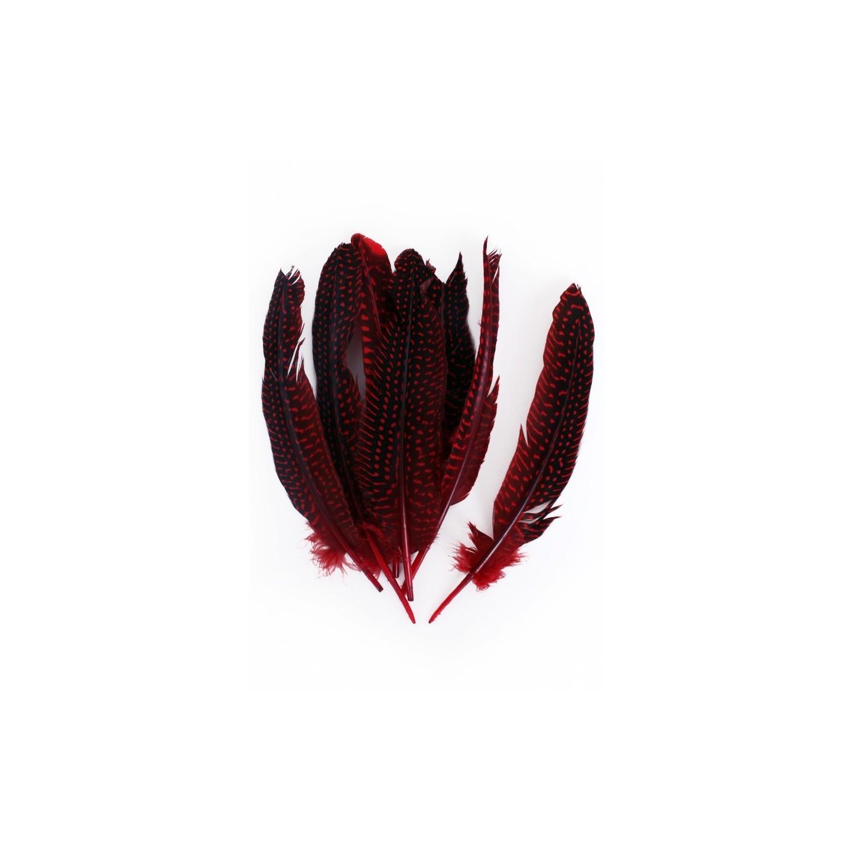 parelhoen veren fournituren rood