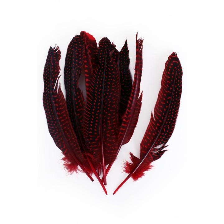 Parelhoen veren rood 15/20cm 10st