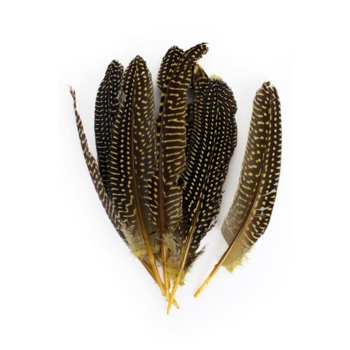 Parelhoen veren geel 15/20cm 10st