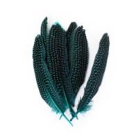 Parelhoen veren turquoise 15/20cm 10st