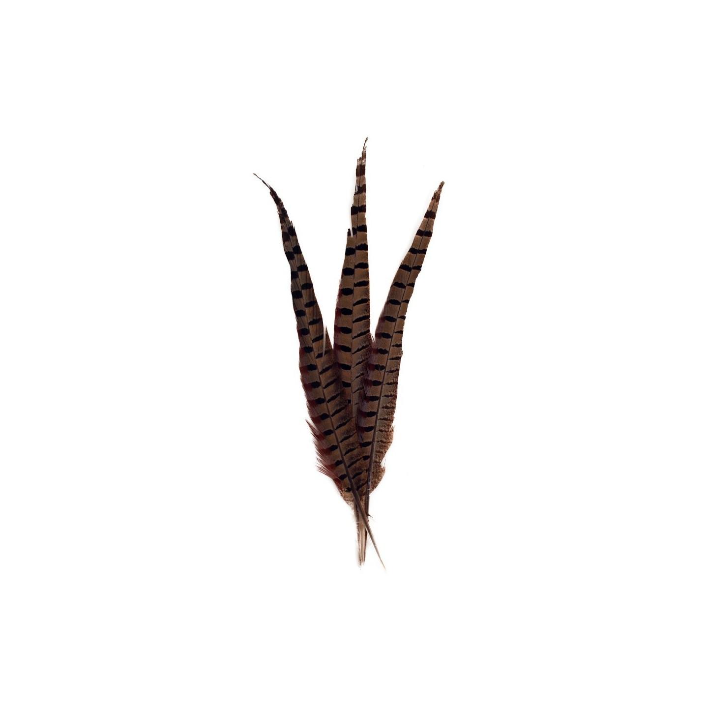 fazanten veren bruin naturel carnaval fournituren