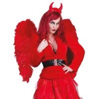 Rode Vleugels 70x65cm