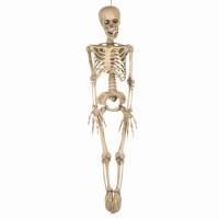 Halloween decoratie skelet 90cm + LED ogen