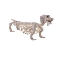 Halloween decoratie skelet Tekkel hond