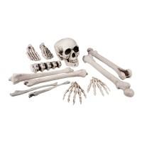 Mini decoratie Skelet knoken setje 12st