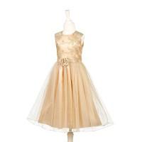 Prinsessenjurk Noraline champagne goud