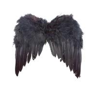 Zwarte Vleugels 35x32cm