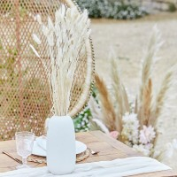 Pampas gras decoratie gedroogd witte bunny tail