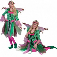 Elfen kostuum Rosy voor dames