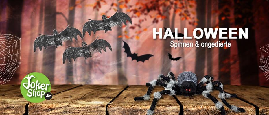 Halloween spinnen ongedierte griezelig