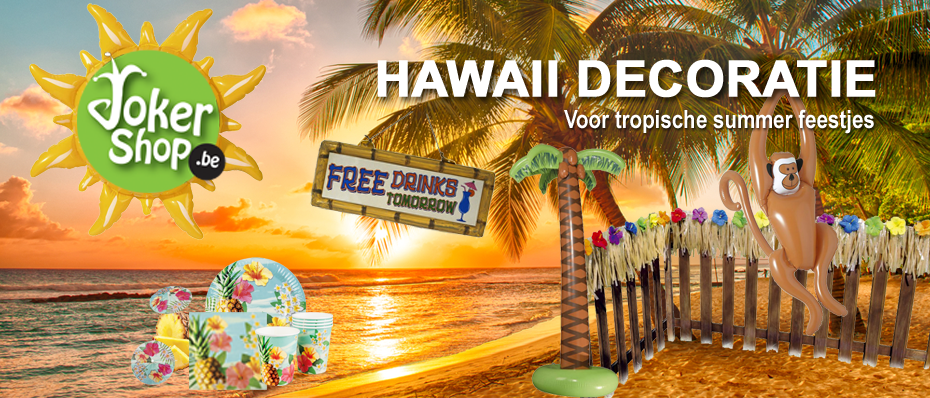 hawaii versiering thema party hawaii feest decoratie