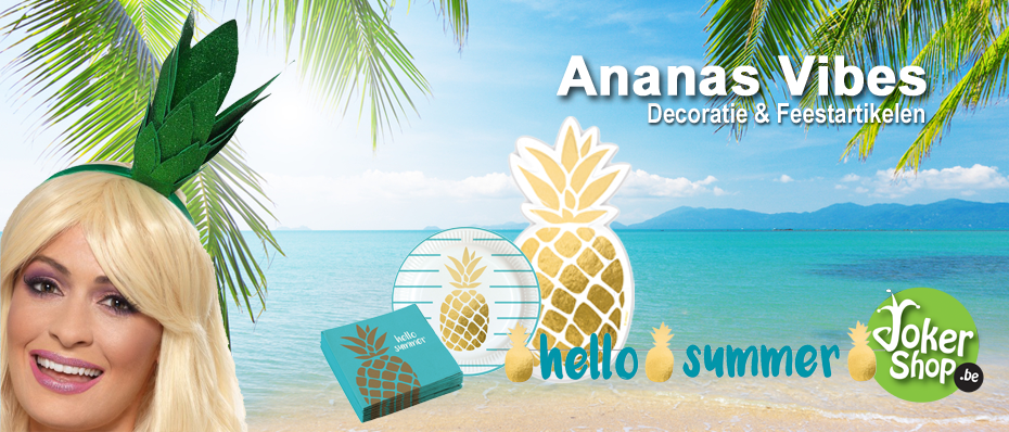 ananas versiering tropische decoratie hawaii party