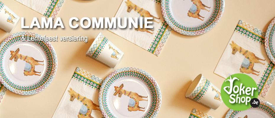 communie lama thema alpaca versiering lentefeest